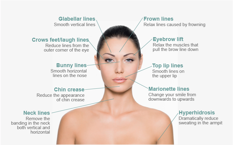 Decoding-your-face-lines